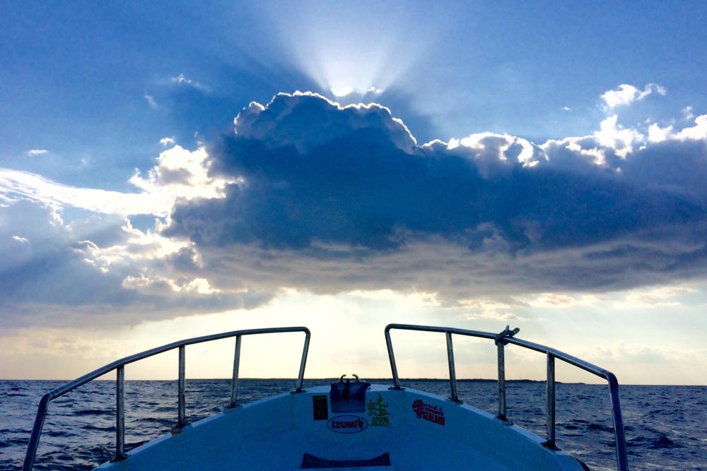 ボートエギング